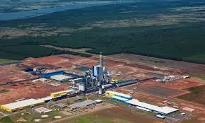 Resultado de imagen para PAPEL BRASIL INTERNATIONAL PAPER