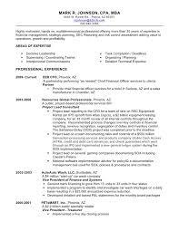 Cfo Resume Examples Interesting Mark Johnson's Resume