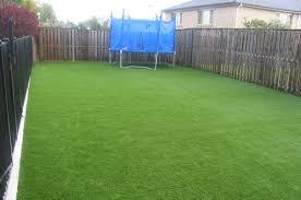 carpet grass. grass carpet australian made after r