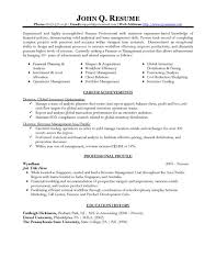 Free Professional Resume Templates Simple Resume Templates For Finance Professionals Finance Resume Template