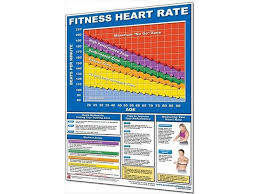 Productive Fitness Cfhp Fitness Heart Rate Chart Paper Newegg Com