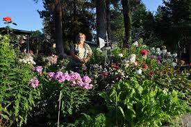 linda knapp stands in her great wall garden surrounded by colorful perennials and whimsical yard art