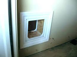 media title cat door installation melbourne flap in glass doors auckland description empty id upload by 0 type image jpg comments open url