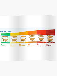 Chonk Chart For Cats Chonk Chart Fat Cat Poster