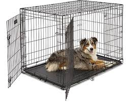 Midwest Dog Crate Size Chart Midwest Lifestages Double Door Dog Crate 24 In