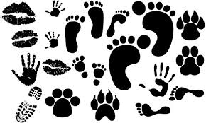 Footprint Free Vector Download 120 Free Vector For Commercial Use