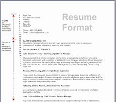 international format of cv proforma of resume oyle kalakaari co