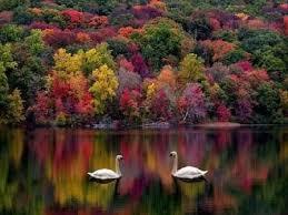 god gifted beautiful nature