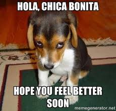 Hola, chica bonita Hope you feel better soon - Sad Puppy | Meme ... via Relatably.com