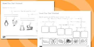 Animal Flow Chart Ks2 Animal Flow Chart Worksheets Australia Animal Flow Chart