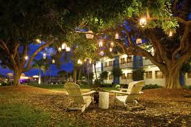 one creative idea is to hang various contrasting lanterns from trees in this picture