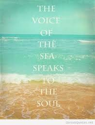 Sea Quotes Mesmerizing Sea Quotes