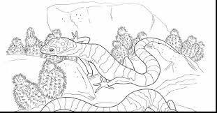 Small Picture Desert Animals Coloring Pages Free Printable Pictures Coloring