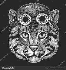 Kočka Divoká Kočka Rybářská Ruku Vykreslí Obrázek Pro Tetování Znak