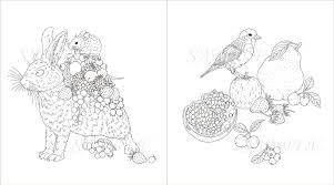 Garden Coloring Book 小鳥と花と動物のぬり絵 玄光社ムック