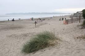Stinson Beach Stinson Beach Ca California Beaches