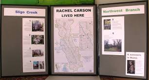 rachel carson photo essay in display format rachel carson lived here email the natural history chair for loan of triptych 3 h x 6 w for tabletop space 5 x 2