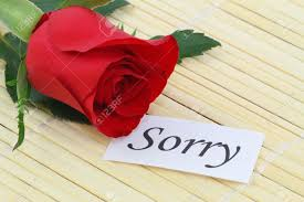sorry note with red rose stock photo 19404507