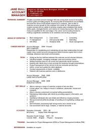 Account manager CV example 6 ...