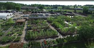 bristol s garden center is a family owned and operated nursery located in victor ny we have served the rochester region since 1985 offering the finest
