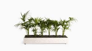 office planter boxes. Flox Freestanding Planter Box Office Boxes T