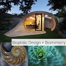 Biophilic Design Examples Biophilic Design Biomimicry By Shelby Burnett Issuu