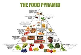 What Is Food Pyramid Chart Amazon Com Food Pyramid Healthy Eating Meal And Diet Plan