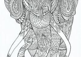 Olifant Kleurplaat Volwassenen Ideeën Coloriage Zen