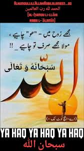 Innocent Danish N Daawar Islam Quran Urdu Quotes Urdu Poetry