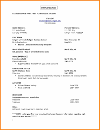 7 College Freshman Resume Example Report Examples