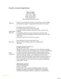 Veterinary Technician Resume Templates With Best Buy Resume
