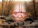 Swami Samarth Elect - swami-samarth-elect