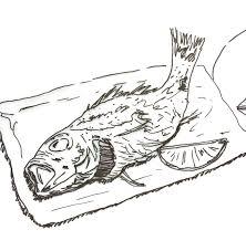 お魚イラスト描きかき一日漁通信の製作中 タベルノモデザインの