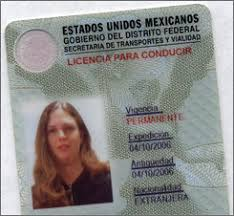 And And Driver's Mexico Mexico Licenses Licenses Driver's