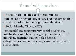 social identity theory 5