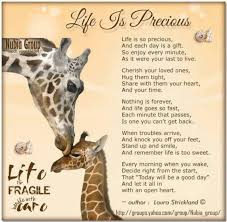 Life Is Precious Quotes Impressive Quotes About Life Is Precious 48 Quotes
