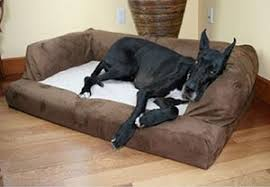 Best Cheap Dog Beds Reviews 2017 which are Top Rated and Low Prices