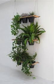 Best 25+ Plant wall ideas on Pinterest | Garden wall planter, Natural  framed art and Living room wall art