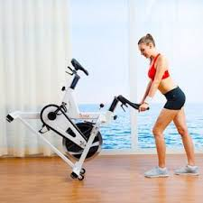 sunny health fitness sf b1110 indoor cycling bike