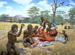 """Alex Richter-Boix auf Twitter: """"Esta hipótesis propone que el bipedismo  apareció primero en especies arborícolas y posteriormente fue aprovechada  por animales que dejaron las ramas de los árboles para desplazarse por el"""