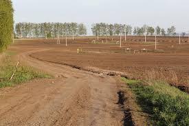 Налог на землю для юридических лиц Современный предприниматель Расчет налога на землю для юридических лиц