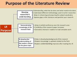 Dissertation writing literature review