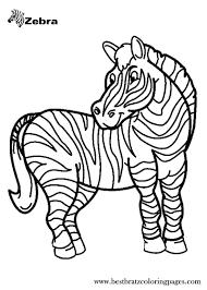 zebra coloring book 2