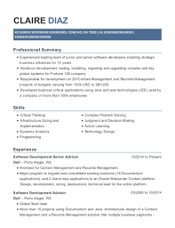Best Junior Software Developer Resumes Resumehelp