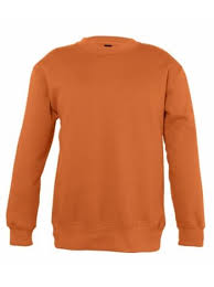<b>Толстовка</b> детская <b>New Supreme</b> Kids 280, оранжевая