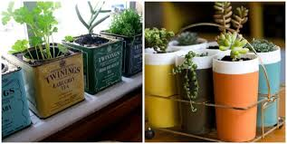 recycled containers herb plants for apartments