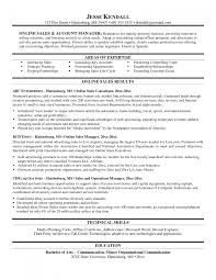 executive resumes examples resume builder executive resumes examples resume examples chronological and functional resumes resume templates resume and bullets on