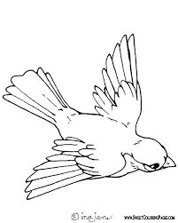 Bird Coloring Pages Lagniappe A A State Bird Free Printable Bird
