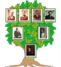 Hallmark Family Tree Photo Display Stand Family Tree Desk Top and Collage Wall Photo Frames A Gift They 98