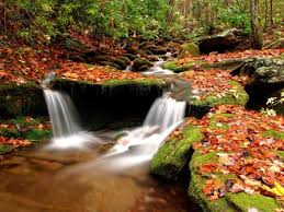 beautiful nature wallpaper for desktop free download. Contemporary Beautiful When It Comes To Beauty Nothing Can Beat The Of Nature Discover  Nature And Get A Free Wallpaper From  Intended Beautiful Nature Wallpaper For Desktop Free Download U